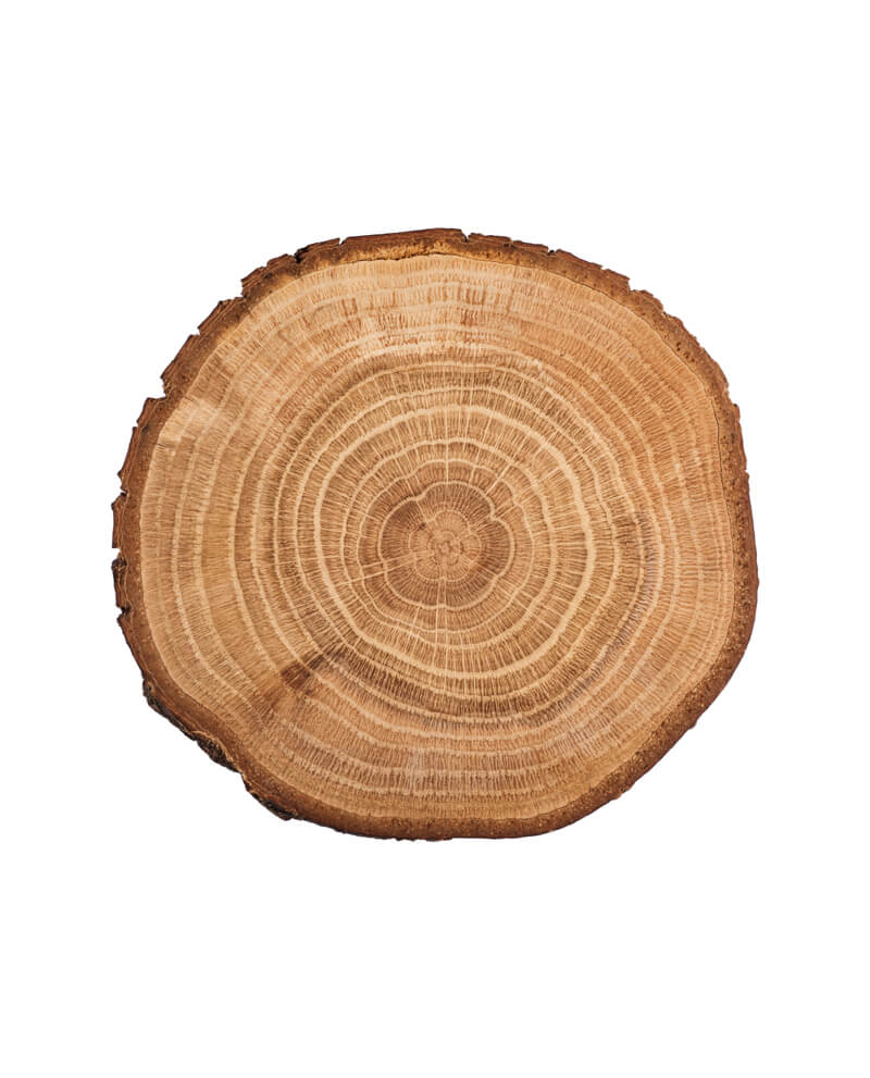 blond wood log natural essential oil