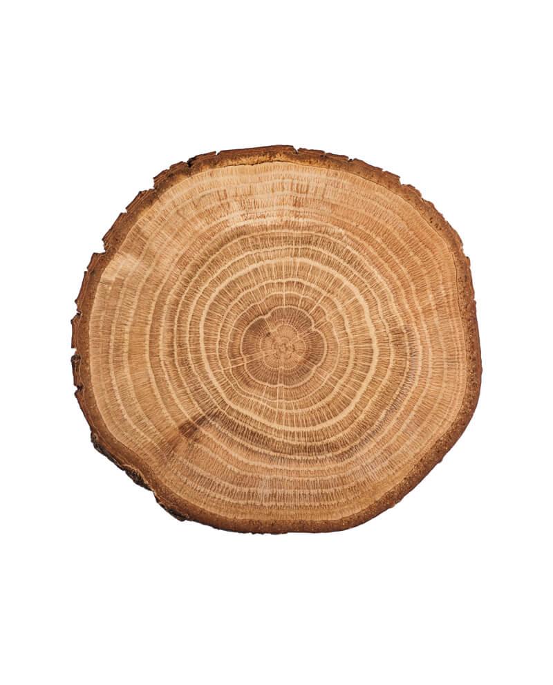 Compoz compositeur cartouche huile essentielle naturelle accord bois blond recolte