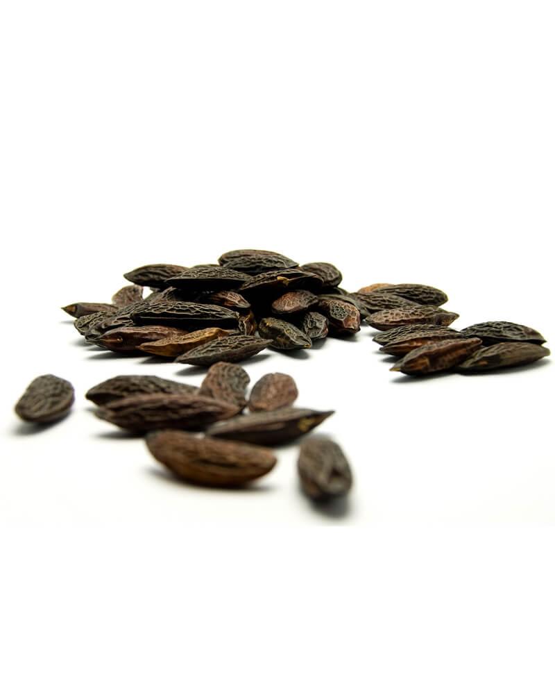 compoz tonka beans essential oil chocolate almond perfume