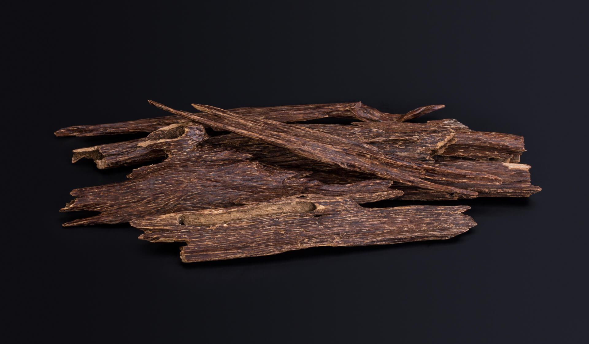 Bois de oud utilisée pour extraire de l'huile essentielle et en faire un parfum