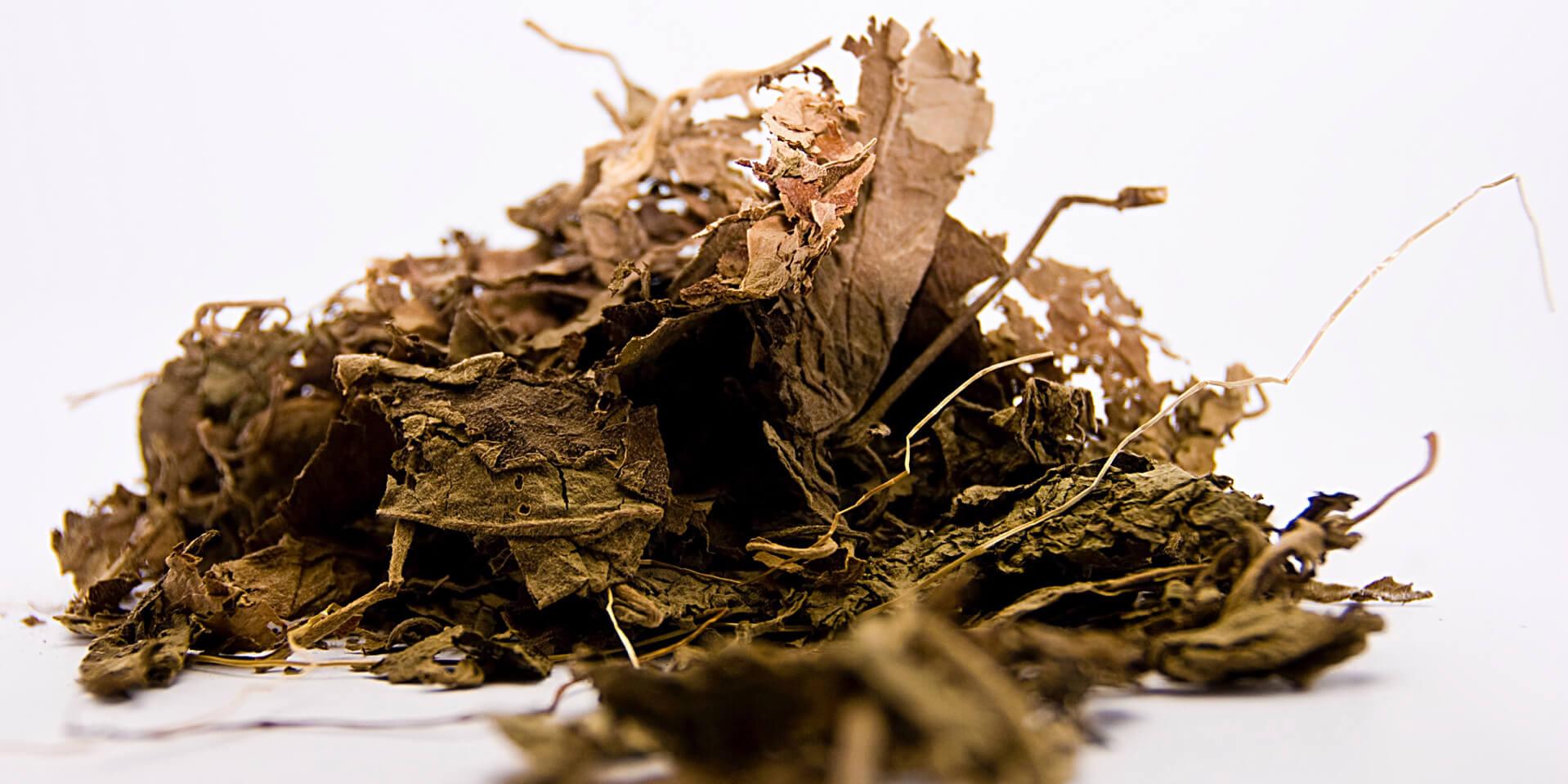 patchouli perfume essential oil compoz