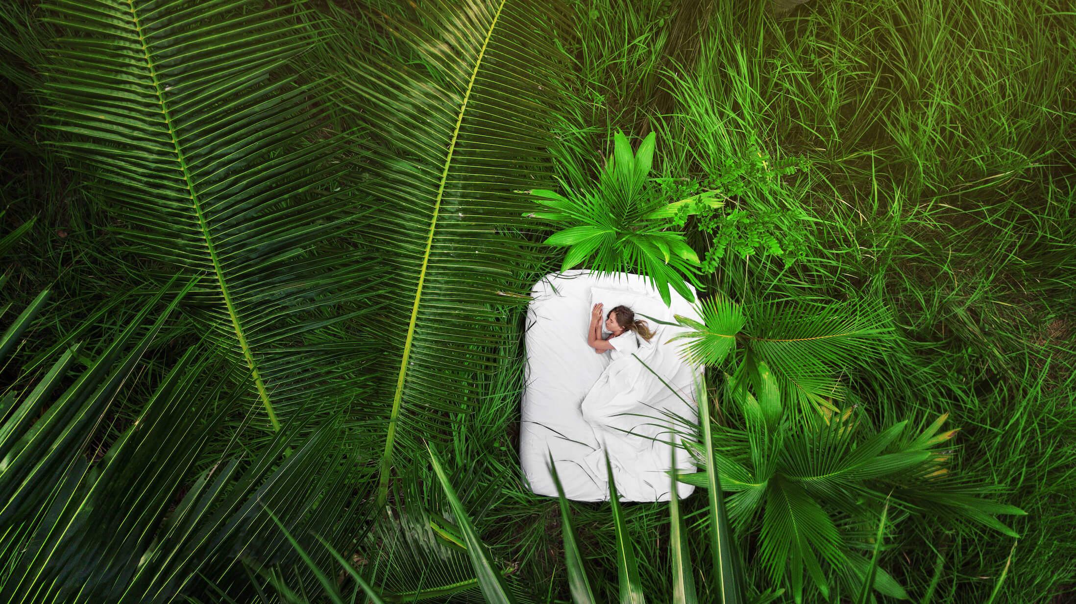 Compoz Parfum - Bien dormir