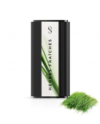 fresh grass pod of natural essential oils to use with le compositeur by compoz